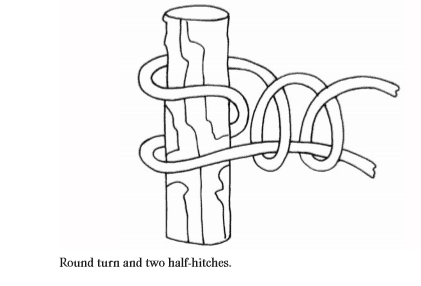 Round turn and two half-hitches knot